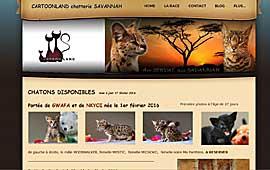 lien vers site www.chat-savannah.net